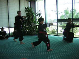 Wang's Martial Arts renk test picture