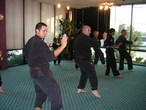 Kung Fu test picture