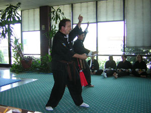 William Stanley Tai Chi test picture