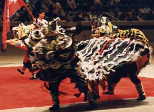 Lion Dance picture