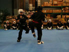 BB test sparring picture